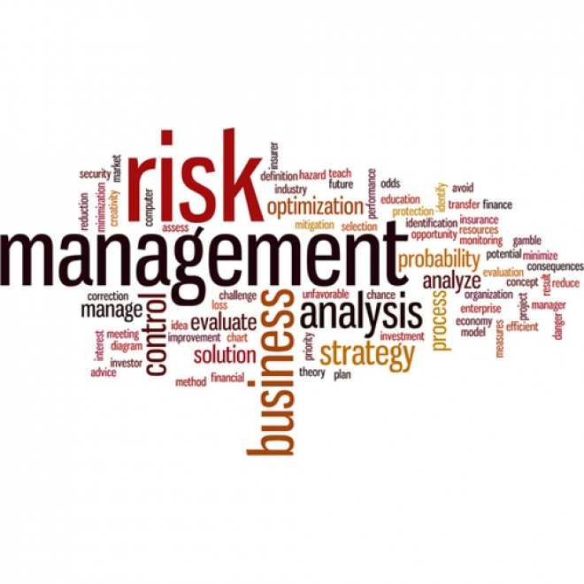 Corporate Travel Risk Management Program