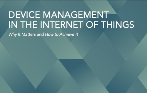 Device Management in the Internet of Things