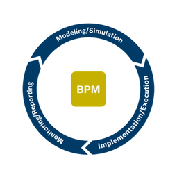 inubit Business Process Management (BPM)