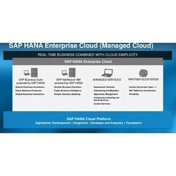 SAP HANA Enterprise Cloud Service