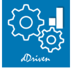 dDriven Solutions  Logo