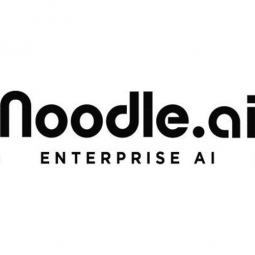 Noodle Analytics Logo